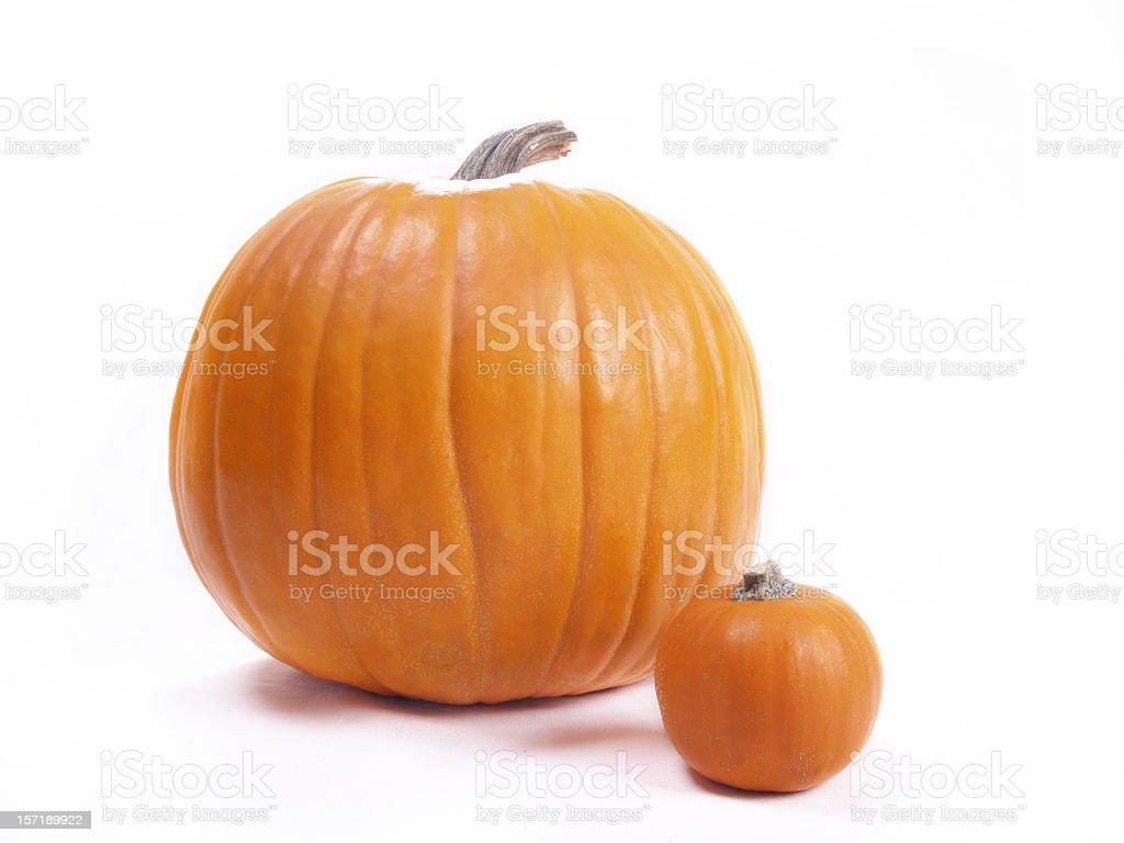 Big and Small Pumpkins royalty-free stock photo