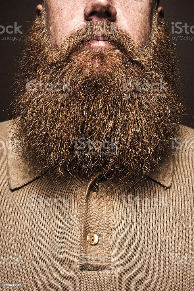 Big Bearded Man Portrait stock photo