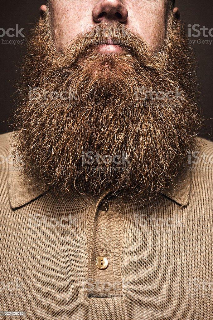 Big Bearded Man Portrait stock photo