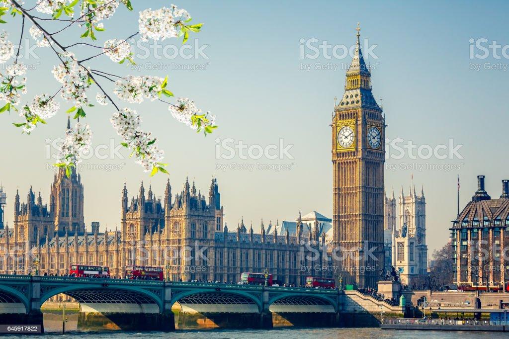 Big Ben in London at spring stock photo