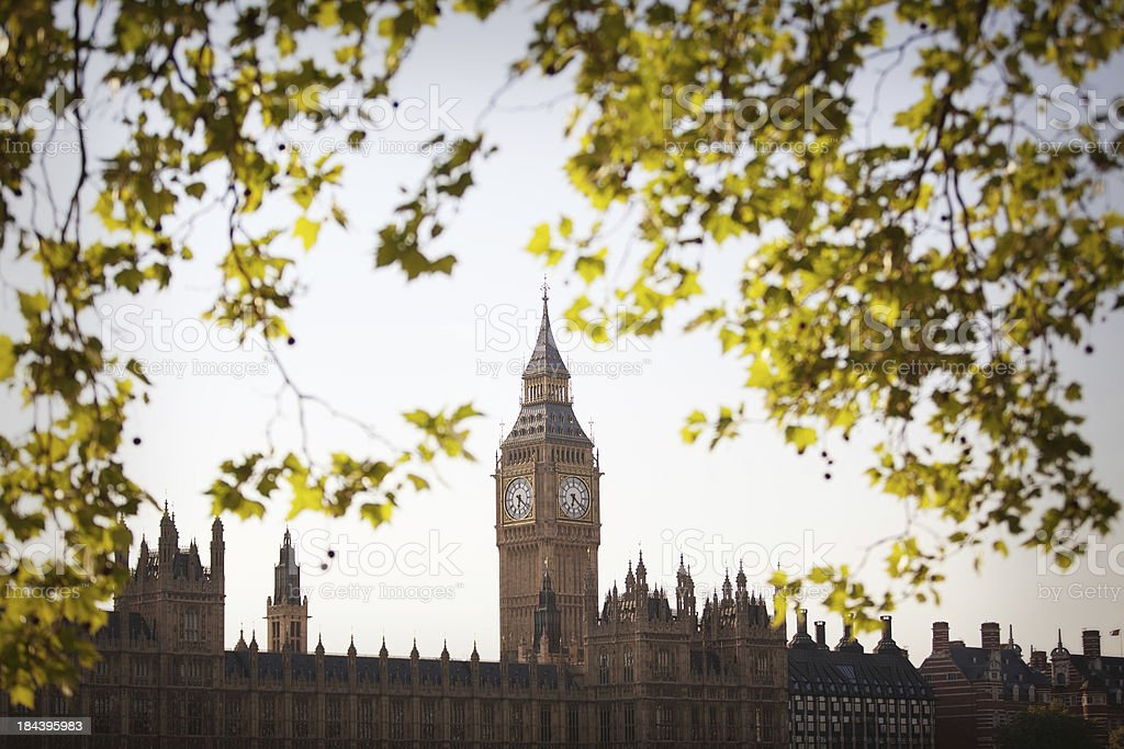 Big Ben in the spring royalty-free stock photo