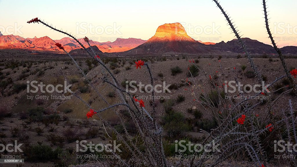 Big Bend National Park Desert Landscape at Sunset stock photo