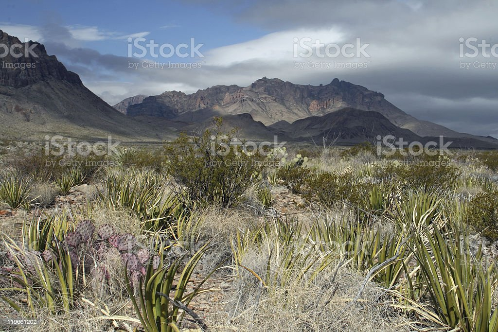 Big Bend National Park stock photo