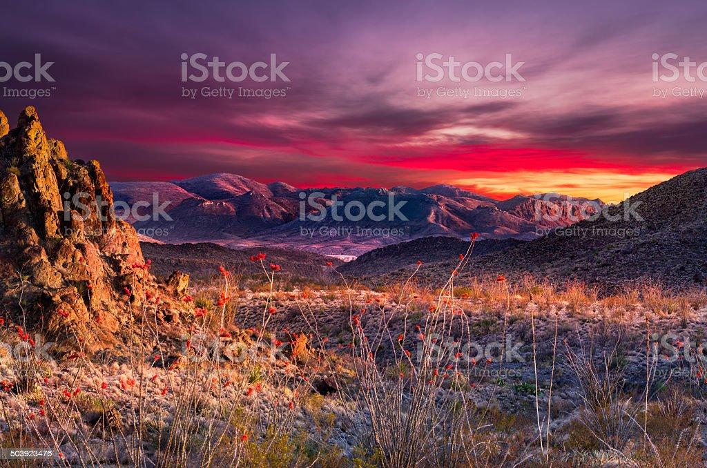 Big Bend Sunset stock photo