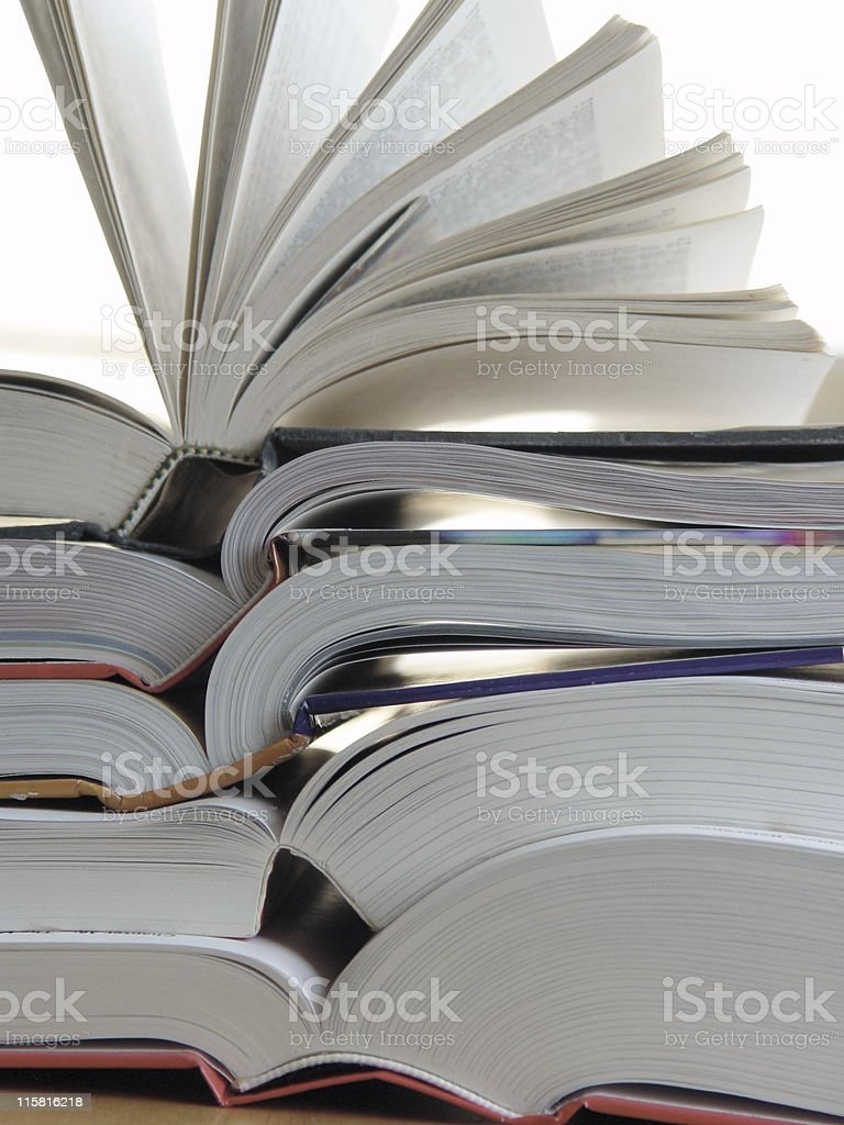 Big Books royalty-free stock photo
