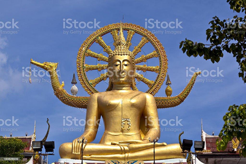 big buddha stock photo