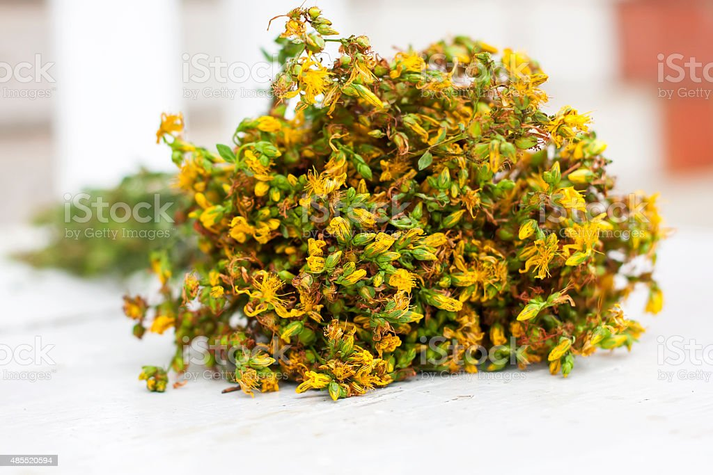 big bunch  yellow flowers Hypericum on white background stock photo