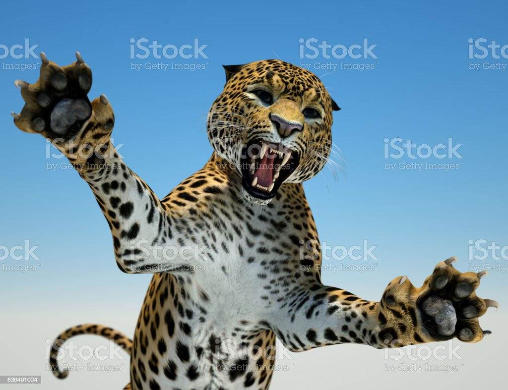 Big cat hunting stock photo