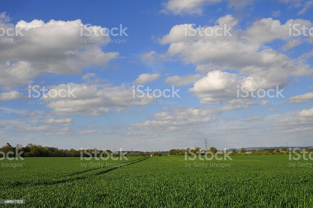 Big Cloudy Sky over Green Fields royalty-free stock photo