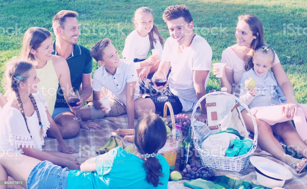 Big family picnic stock photo