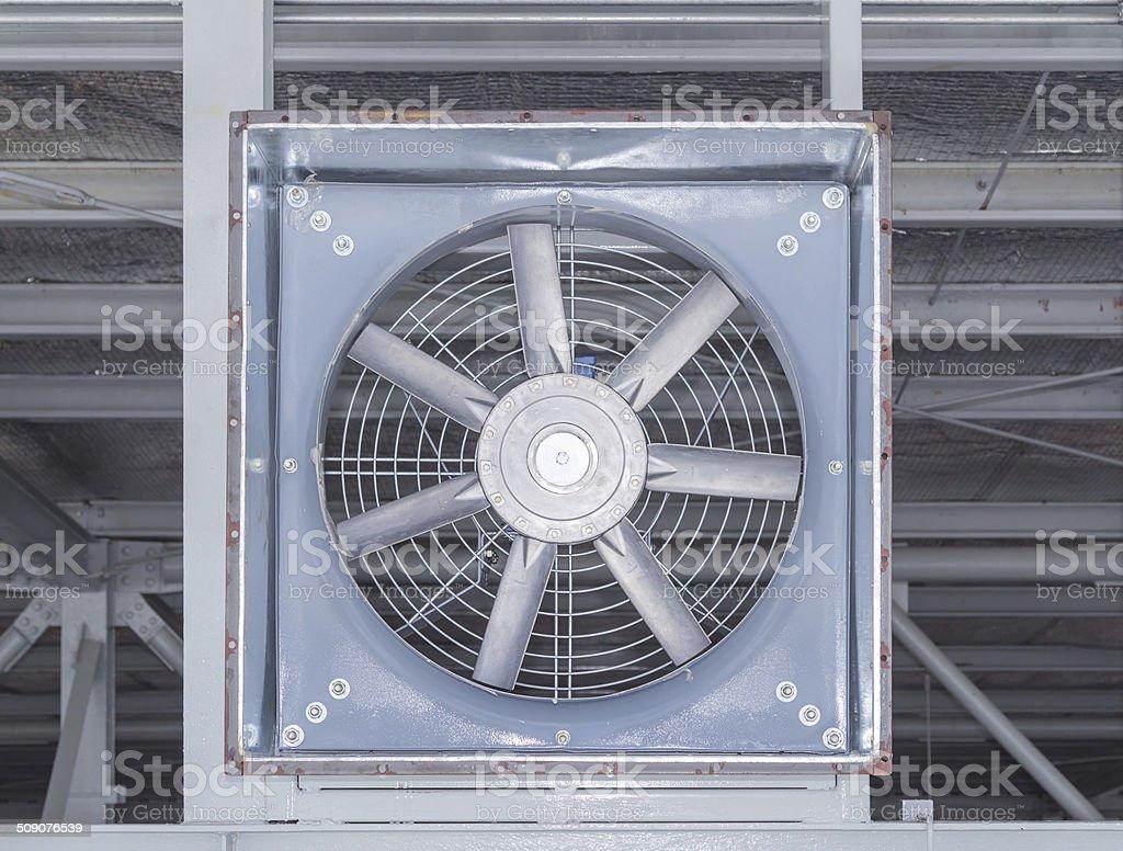 Big fan stock photo