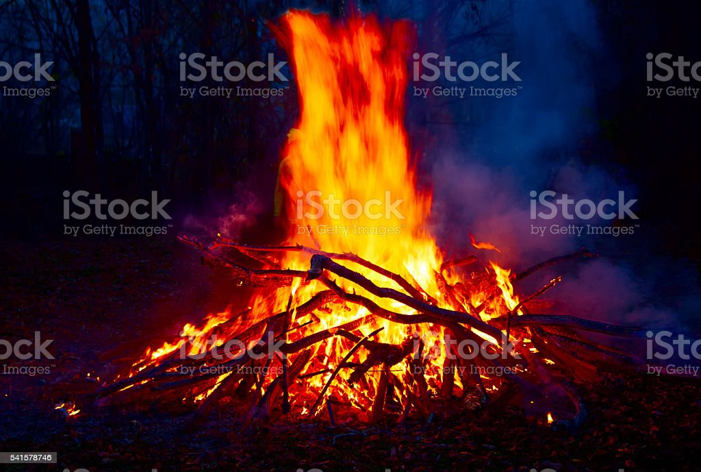 Big fire in the forest. stock photo