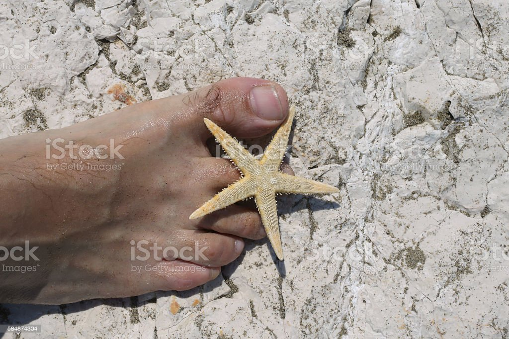 big foot barefoot of a young man and starfish stock photo
