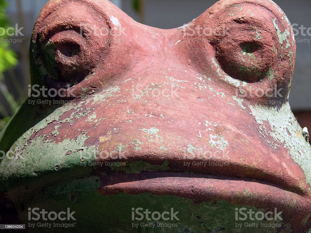 Big Frog royalty-free stock photo