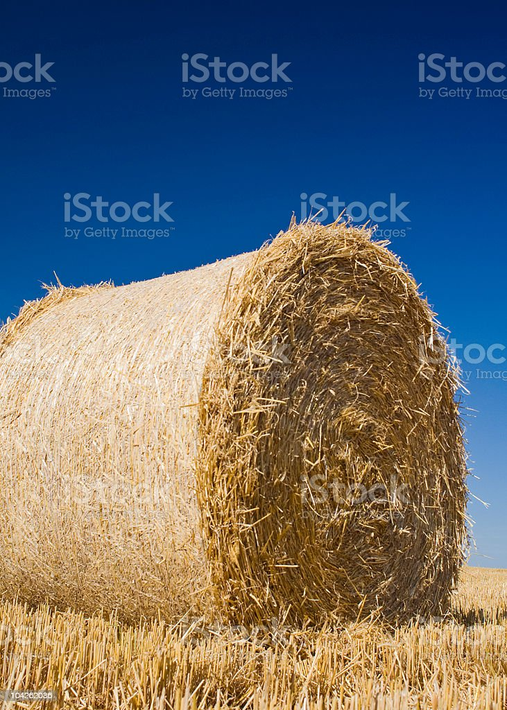 Big golden hay bale royalty-free stock photo