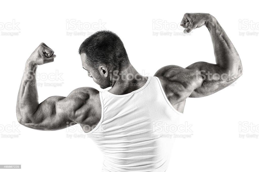 Big guns royalty-free stock photo