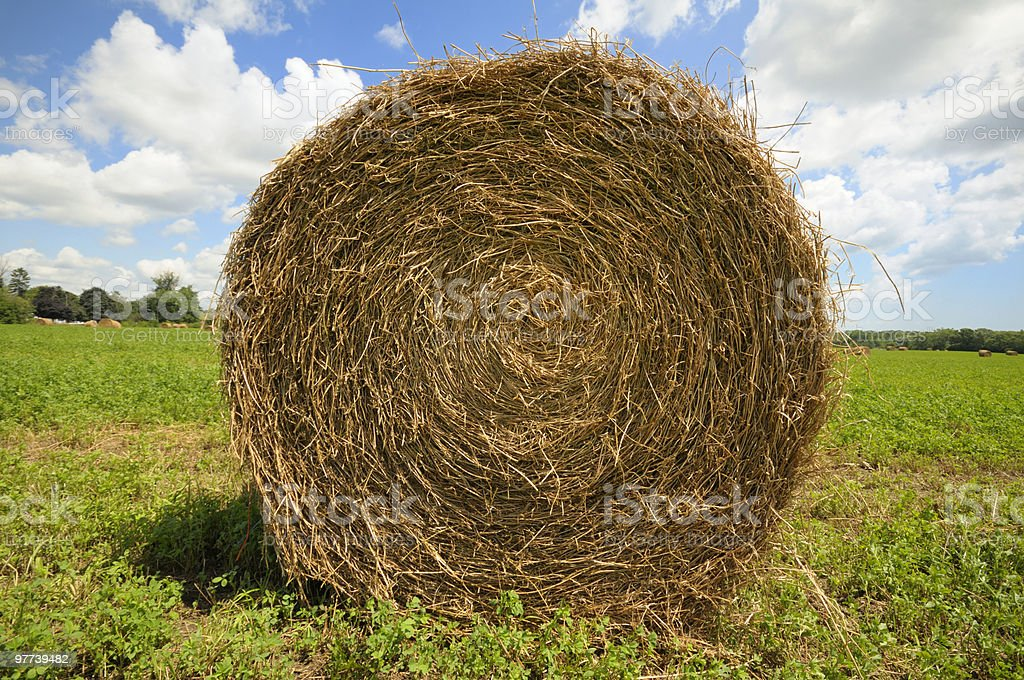 A big hay bale on a farm on a sunny day stock photo