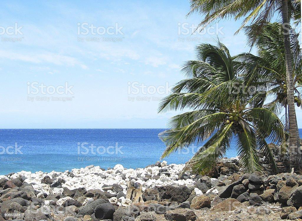 Big Island Hawaii beach royalty-free stock photo