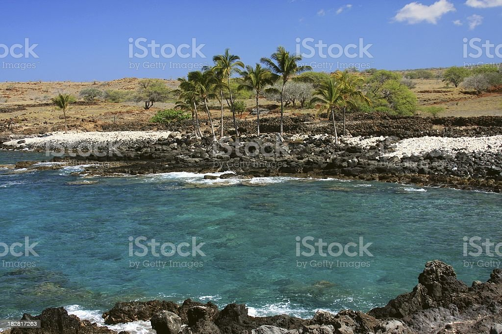 Big Island Hawaii Palm tree ocean scenic royalty-free stock photo