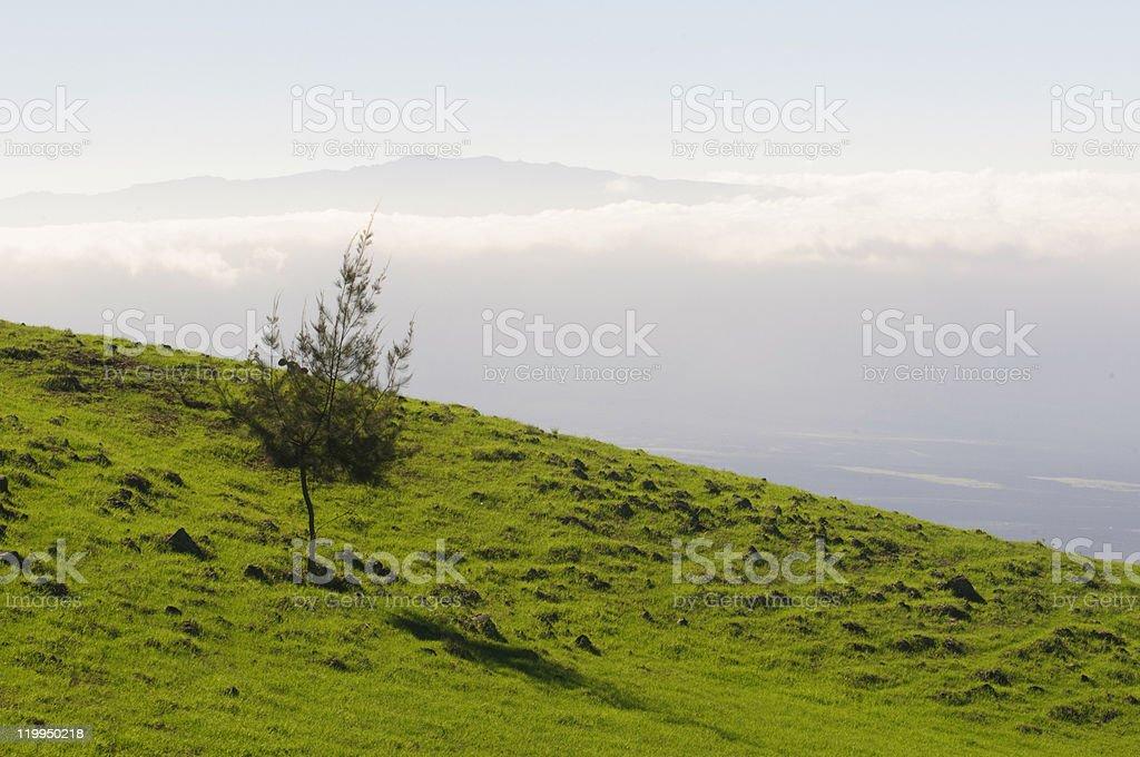 Big Island landscape royalty-free stock photo