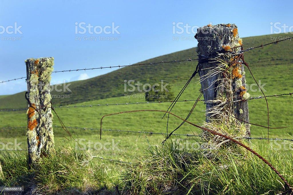Big Island Upcountry Fence royalty-free stock photo