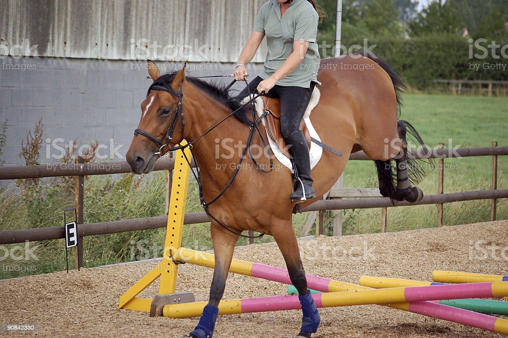 big jump for this young horse stock photo