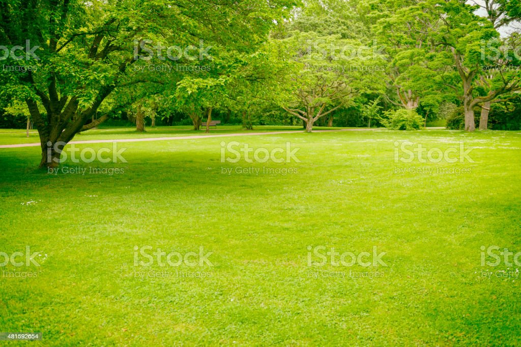 Big Lawn in Green Park stock photo