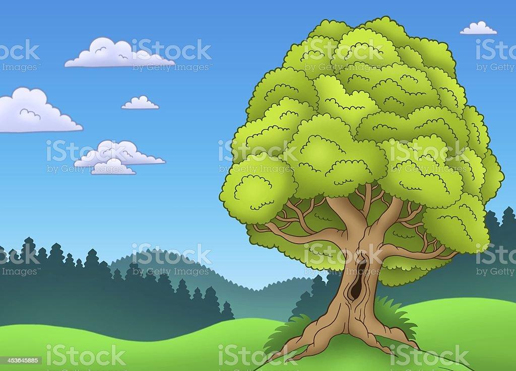 Big leafy tree in landscape stock photo