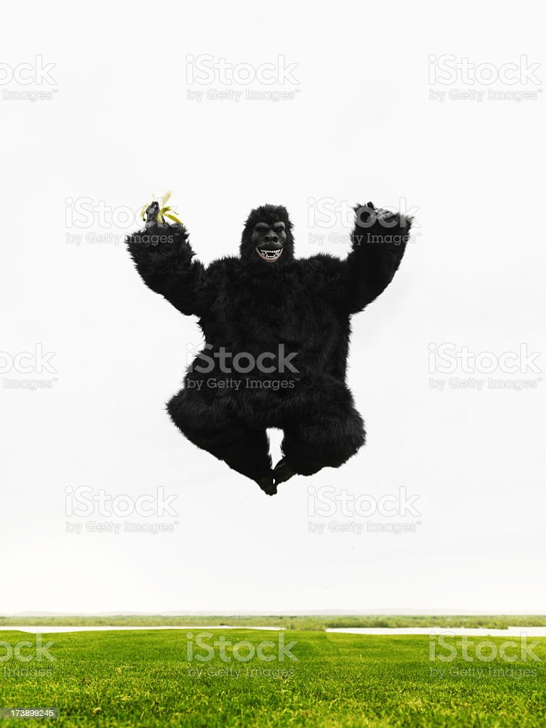 Big Monkey jumping in a meadow royalty-free stock photo