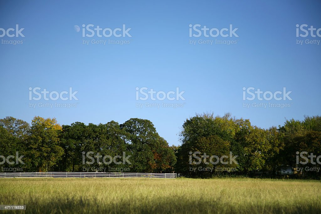 Big Open Field At A Ranch royalty-free stock photo