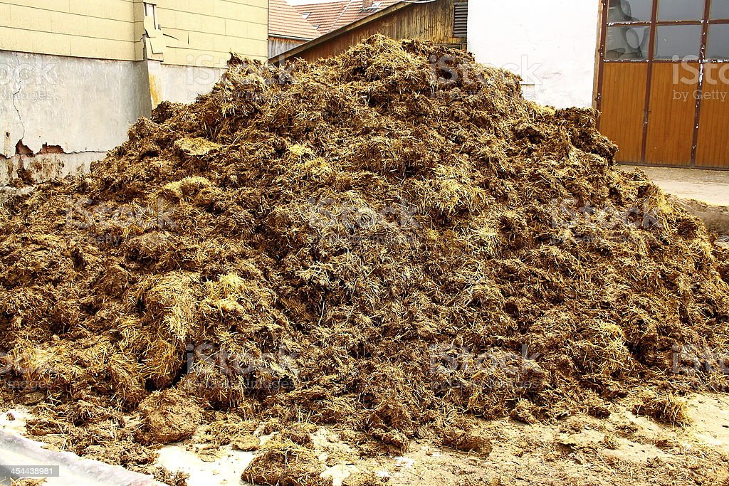 Big pile of manure, as background stock photo