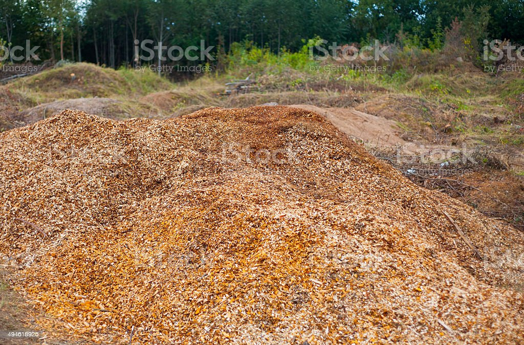 big pile of sawdust stock photo