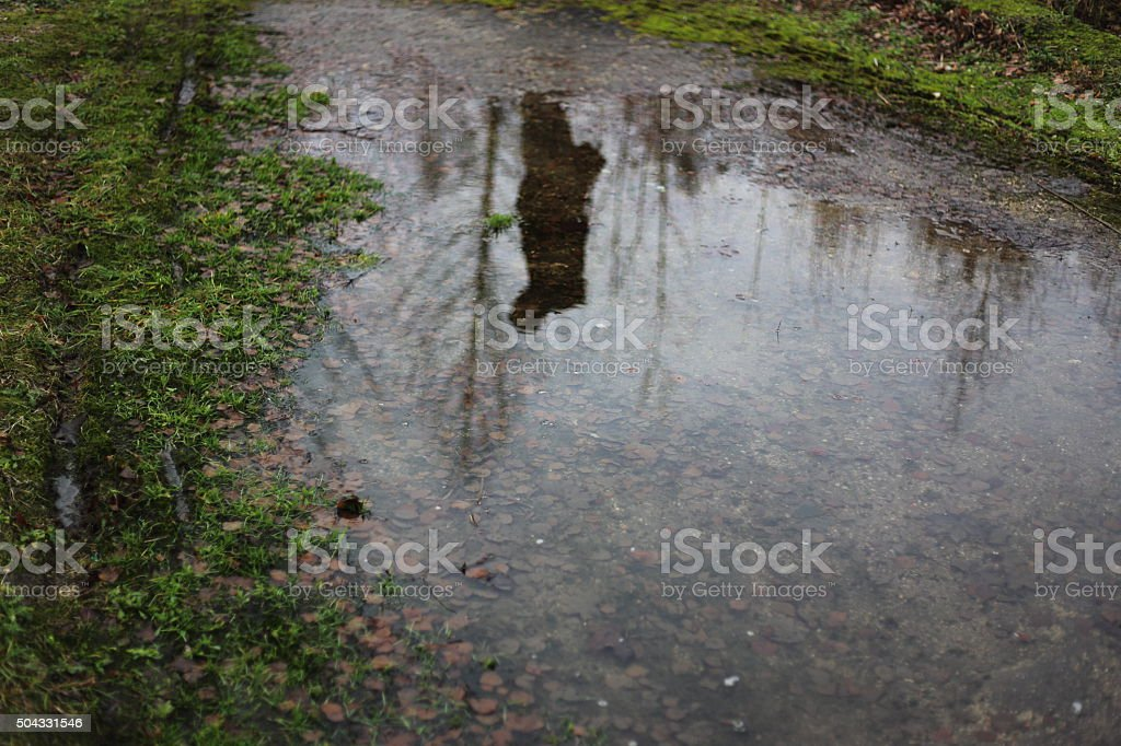 Big puddle and reflection of man royalty-free stock photo