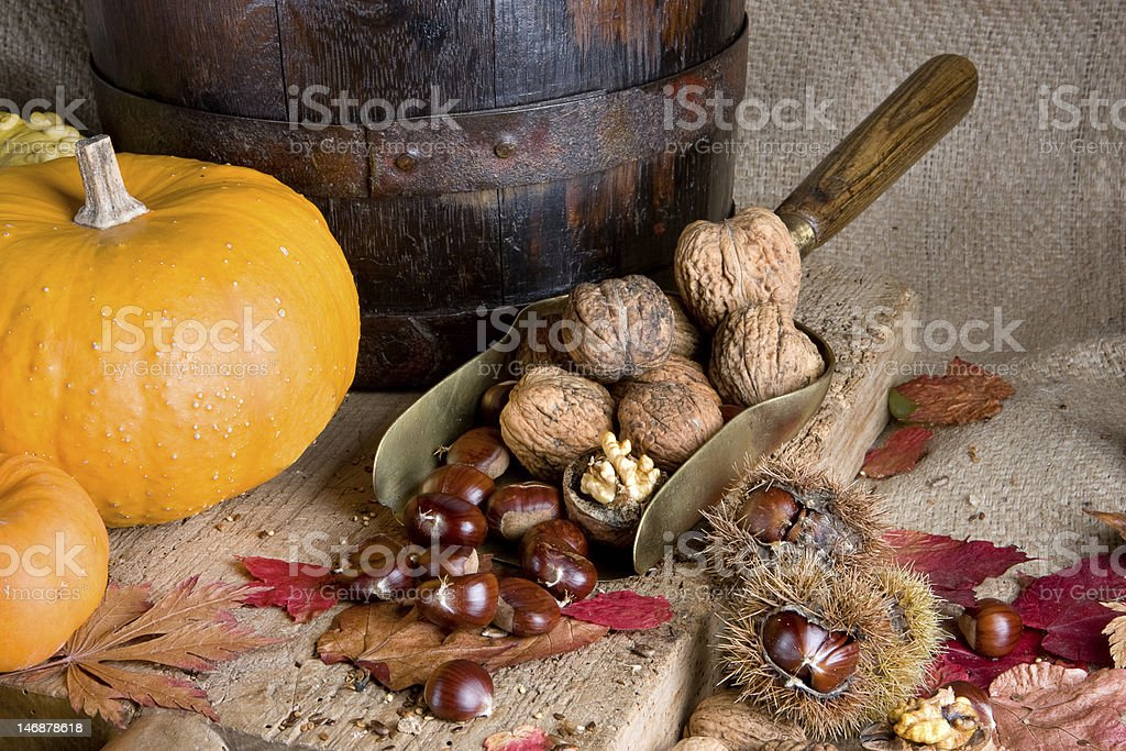 Big pumpkin small nuts royalty-free stock photo