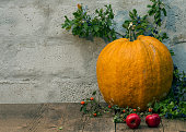 big pumpkin with apples and branches with berries
