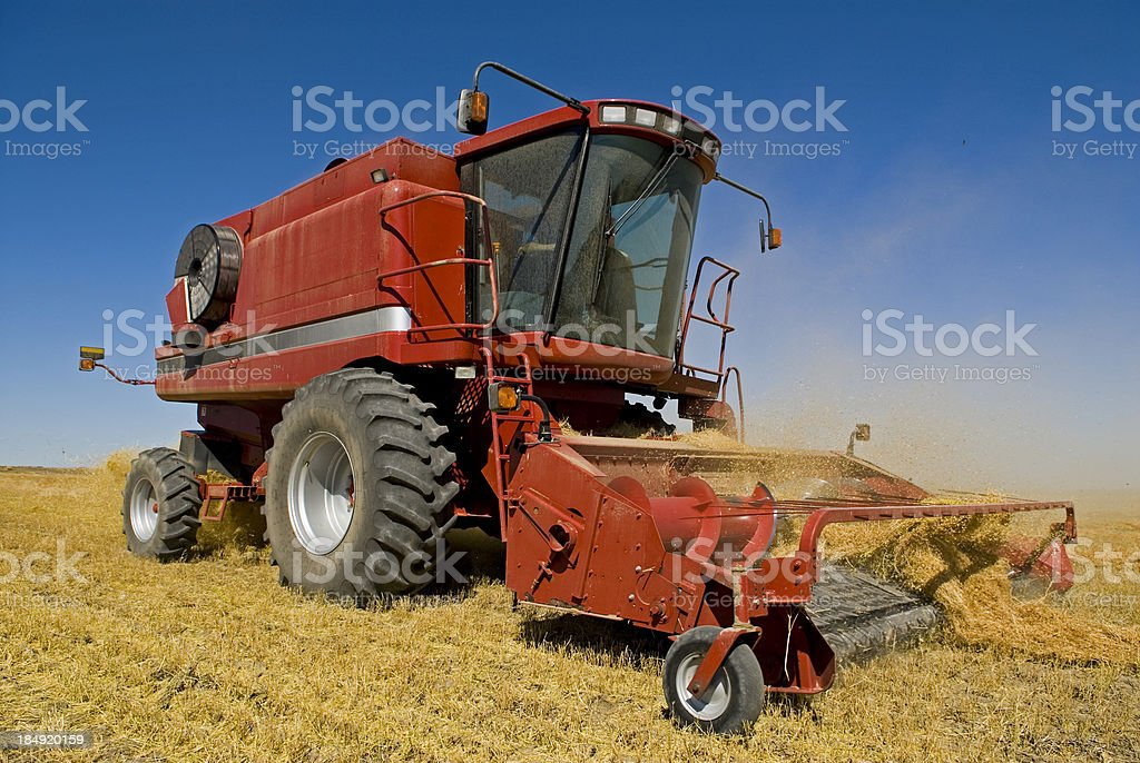 Big Red one stock photo