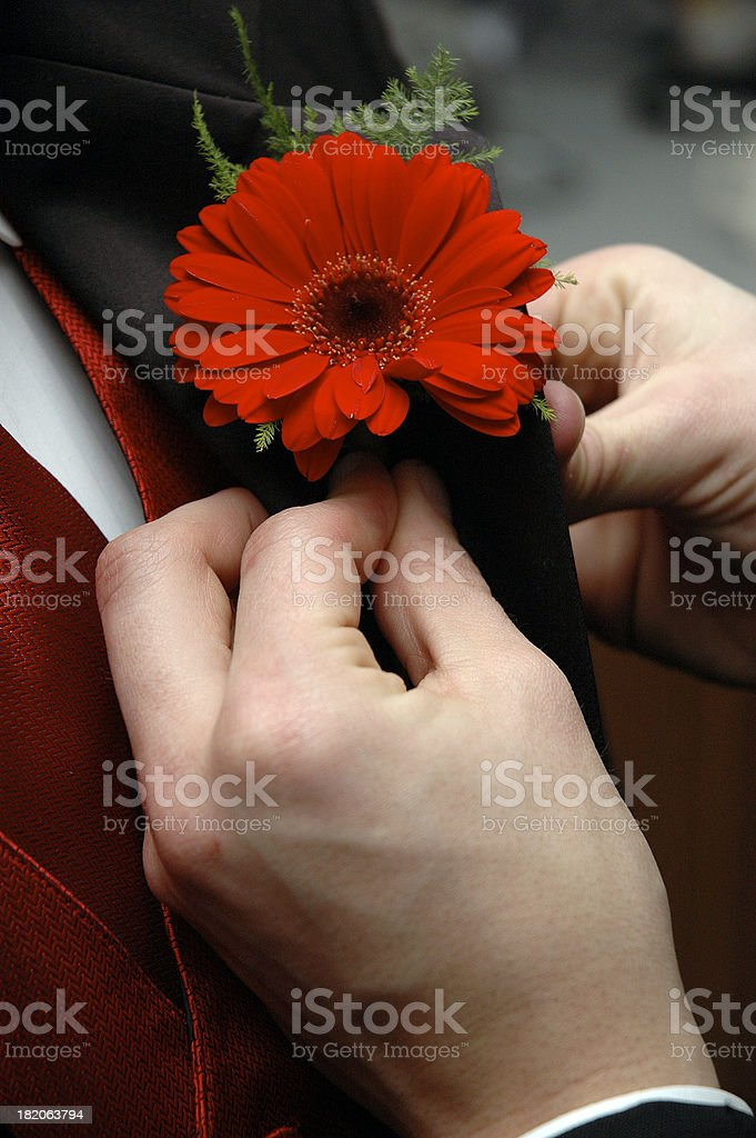 Big Red royalty-free stock photo