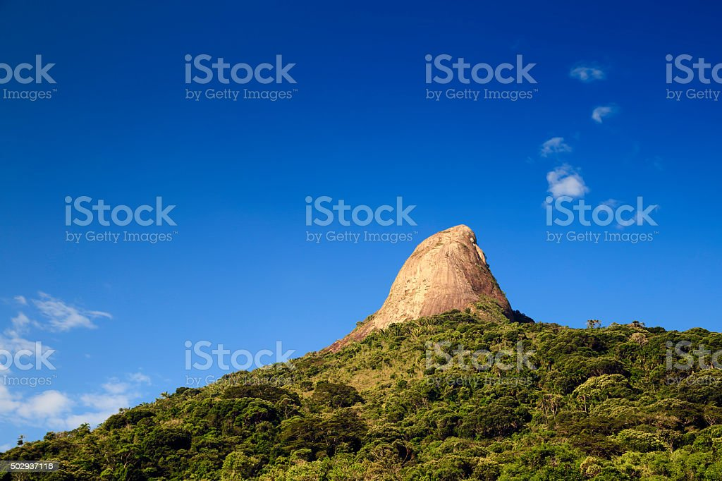 Big Rock Trees stock photo