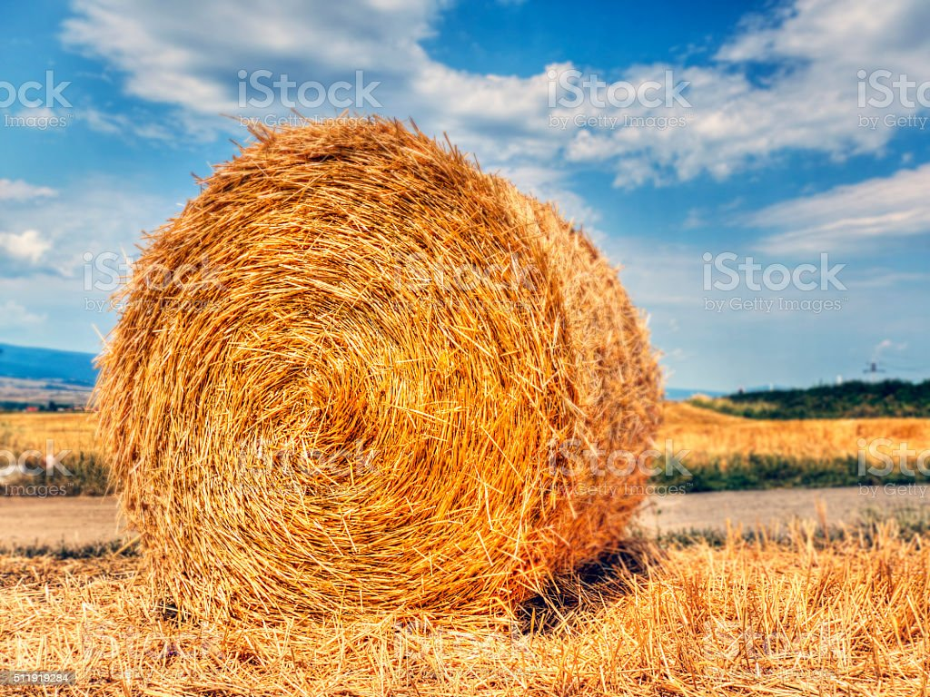 Big Round Bale of Straw stock photo