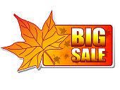 big sale autumn label with leaf.