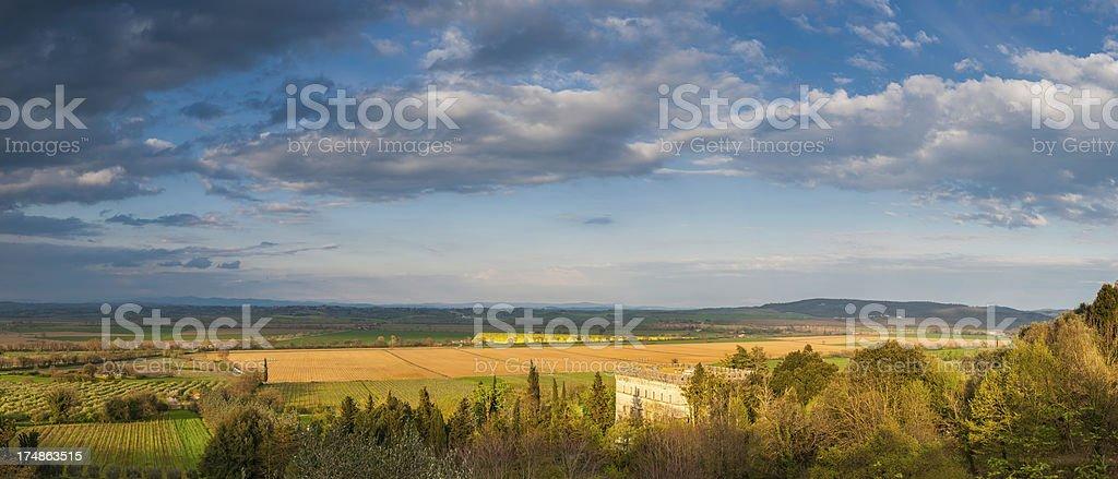 Big skies and sunlight on golden farmland Tuscany Italy royalty-free stock photo