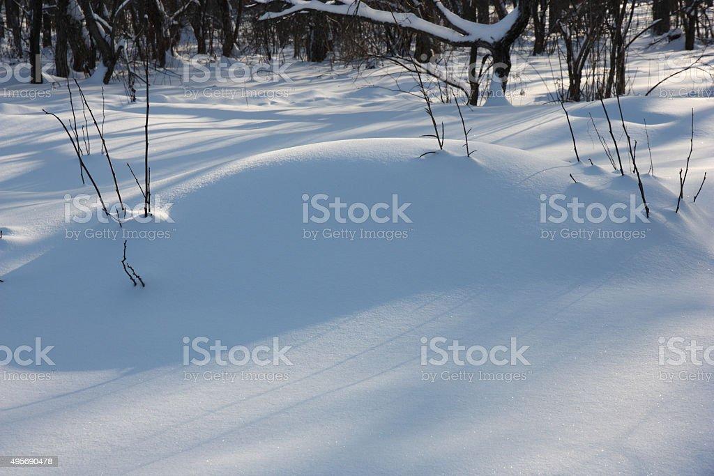 Big snowdrift in winter wood stock photo