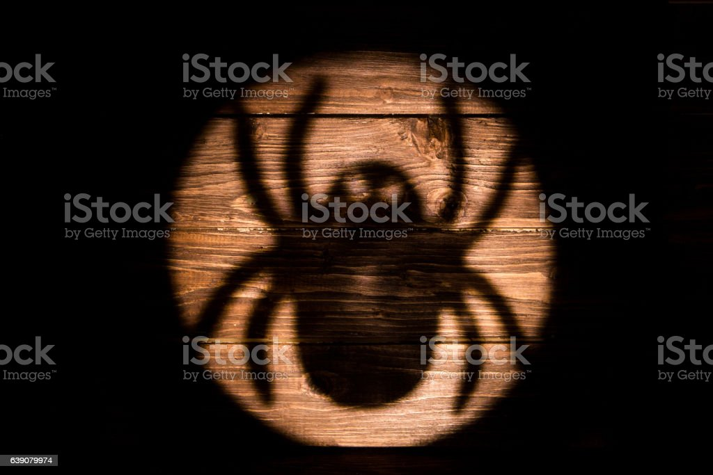 Big spider shadow on the wooden background stock photo