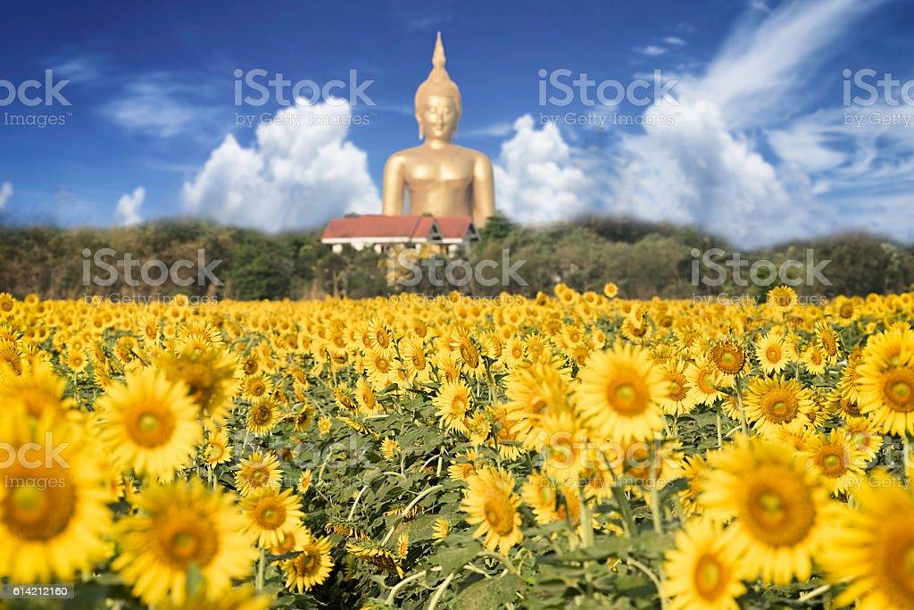 Big statue image of Buddha stock photo