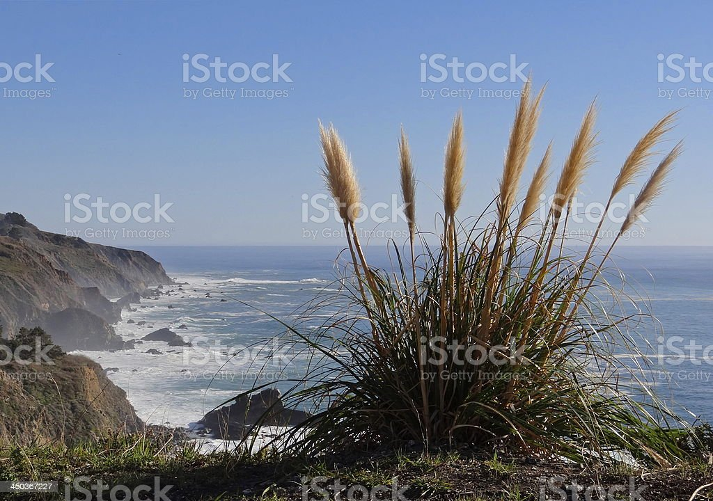 Big Sur Coast stock photo