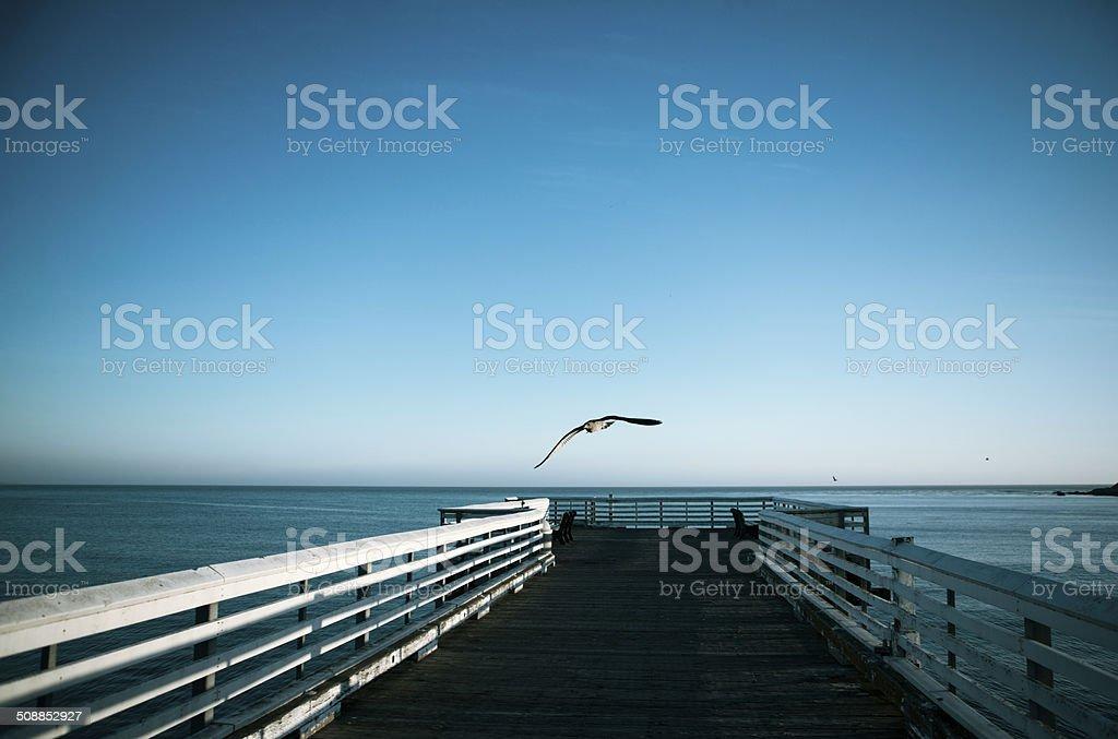 Big Sur Jetty royalty-free stock photo