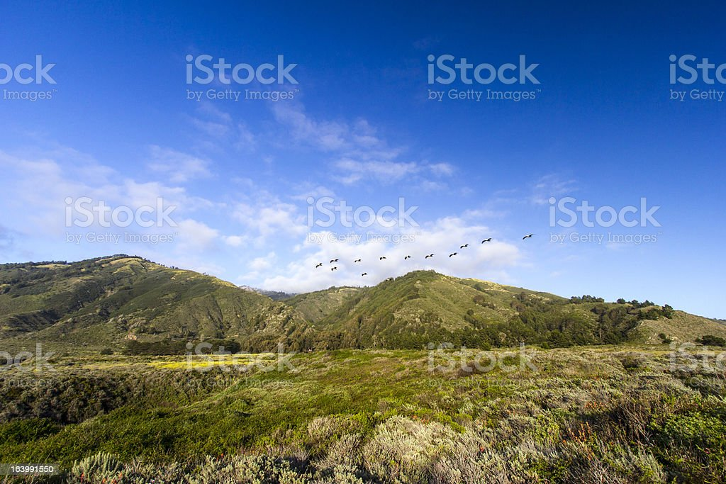 Big Sur royalty-free stock photo