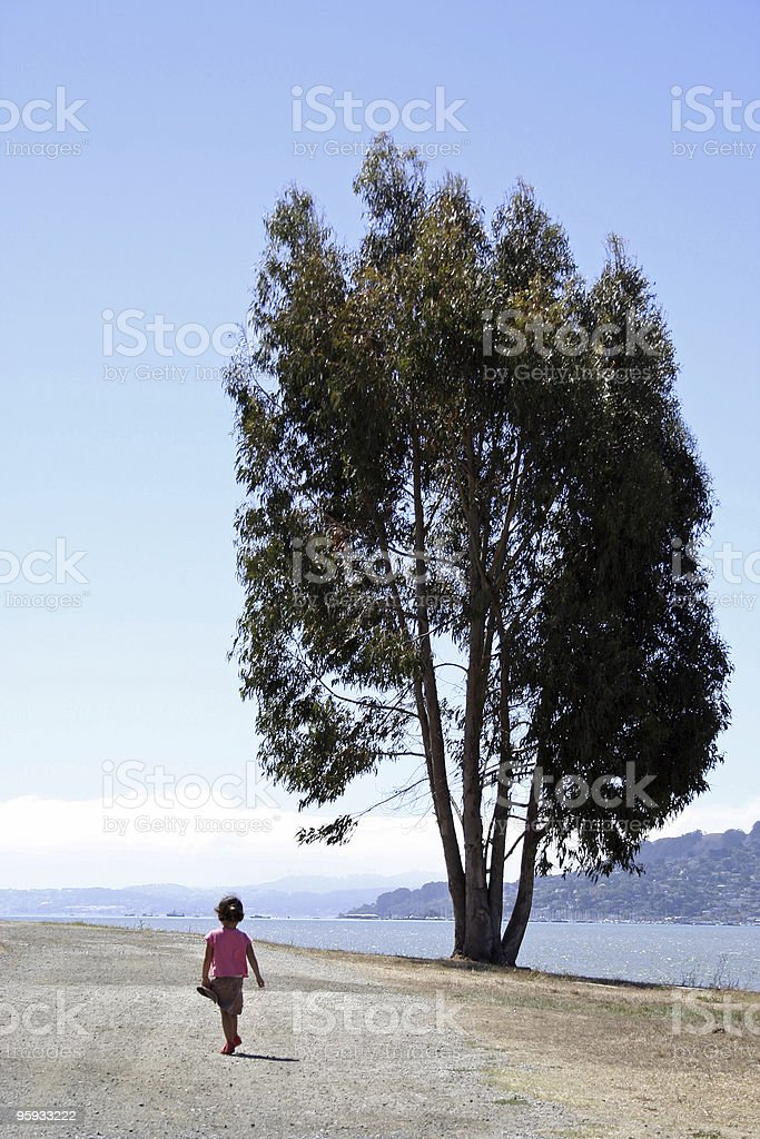 Big Tree, Little Girl royalty-free stock photo