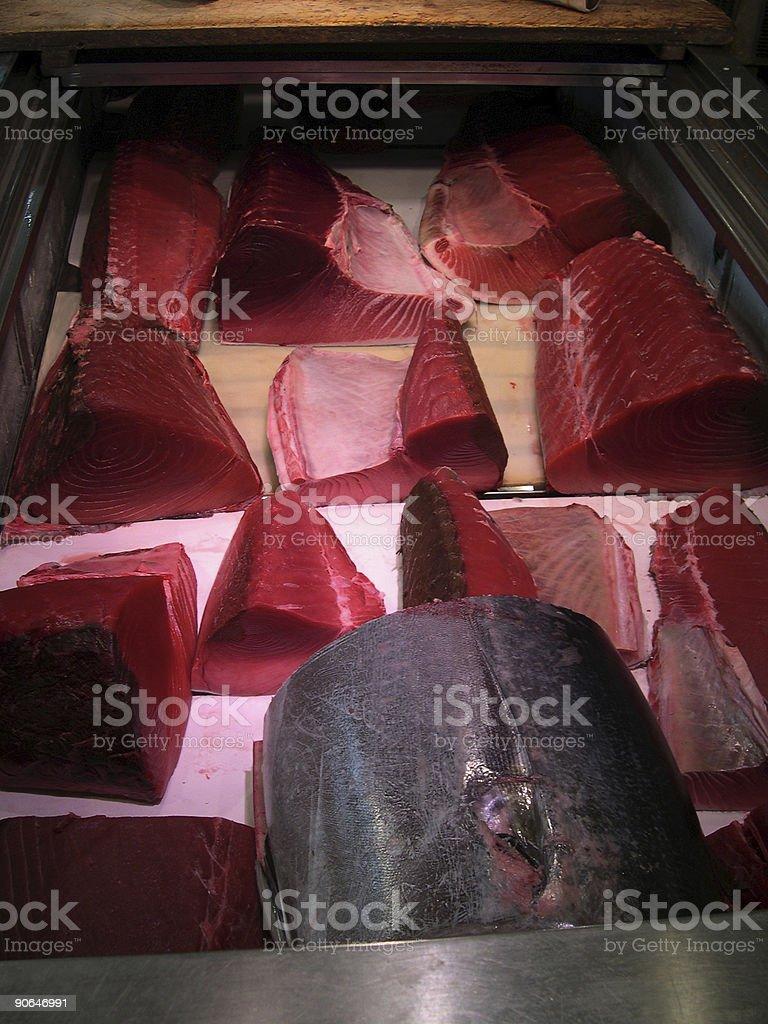Big Tuna royalty-free stock photo