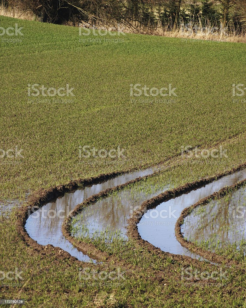 big water filled tractor ruts in a graden royalty-free stock photo